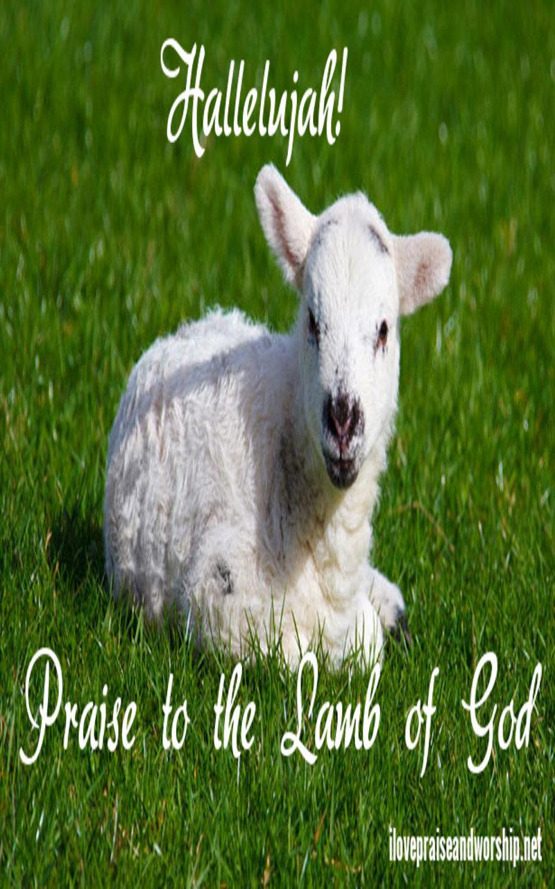 Praise To The Lamb ofGod