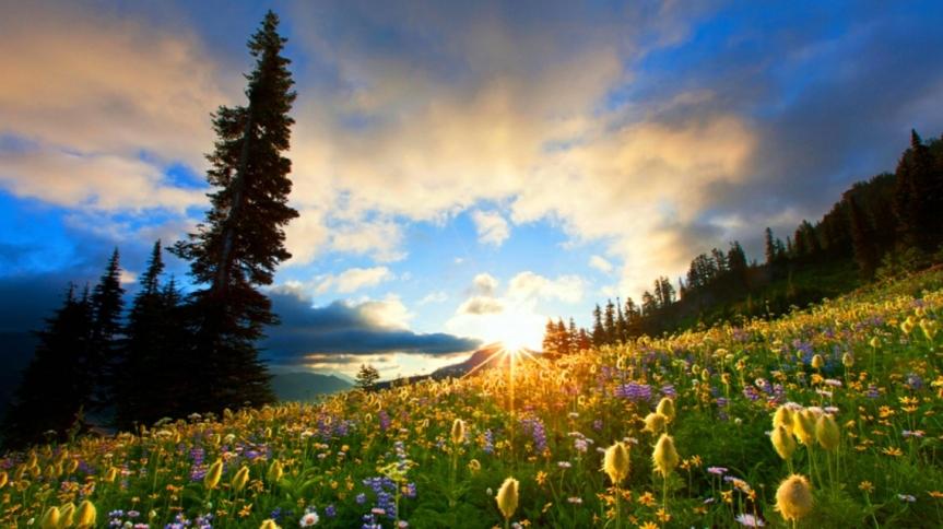The Sunrise of God'sWord